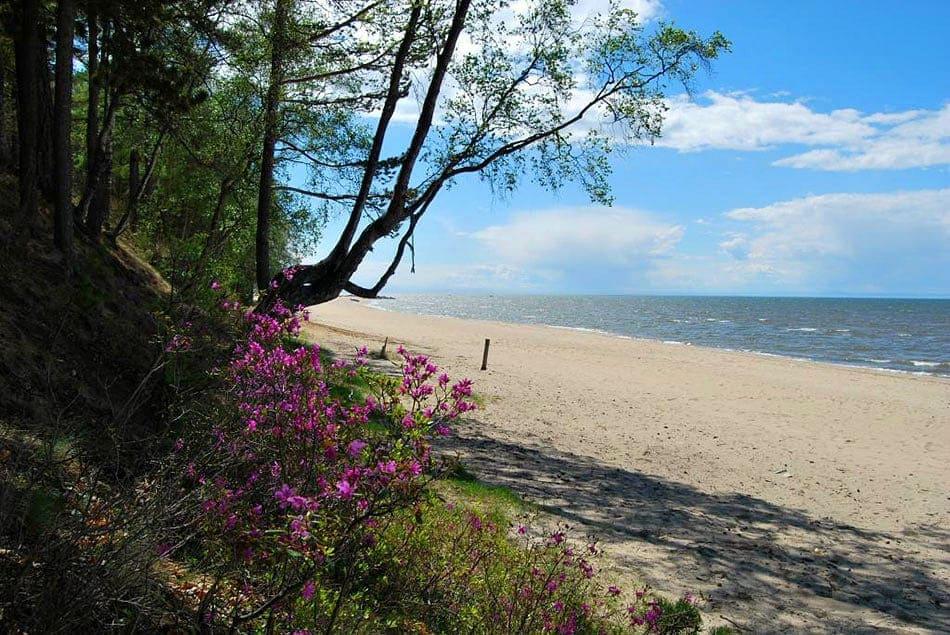 байкальский берег в Энхалуке